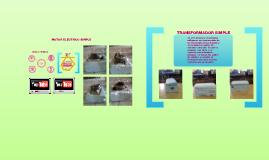 Copy of motor electrico simple