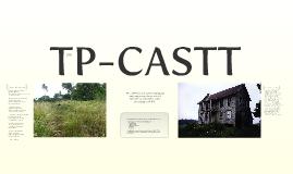Copy of TP-CASTT Poetry Analysis
