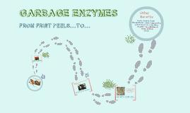 Garbage Enzymes