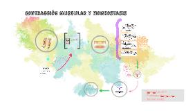 Contraccion muscular y homeostasis