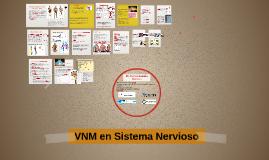VNM en Sistema Nervioso