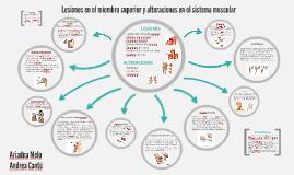Lesiones del miembro superior y alteraciones sistema muscula