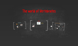 The world of Vertebrates