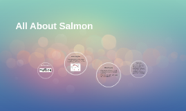 All About Salmon