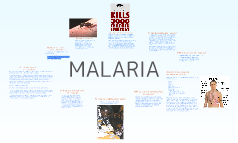 Malaria: What is it?