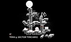 TEMA 9. SECTOR TERCIARIO