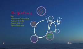 The Lipid Family