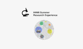 HHMI Summer Research Experience