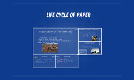 Life cycle of paper