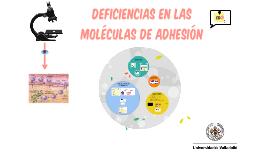 DEFICIENCIAS EN LAS MOLÉCULAS DE ADHESIÓN