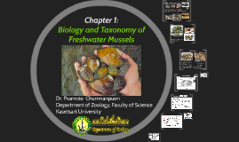 Biology and Taxonomy of Freshwater Mussels