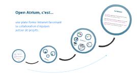 Copy of Open atrium
