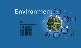 Copy of environment