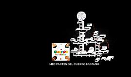 MEC PARTES DEL CUERPO HUMANO