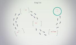 King Tuts life