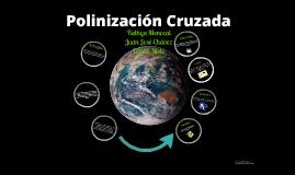 Polinización Cruzada