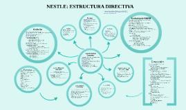 Copy of Nestle: Estructura Directiva