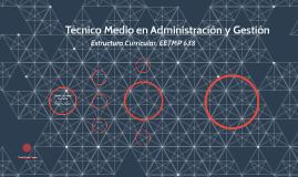 Técnico Medio en Administración y Gestión