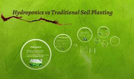 Hydroponics vs Traditional Soil Planting