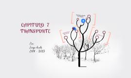 CAPITULO 7 - TRANSPORTE
