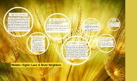 Higher Laws Summary