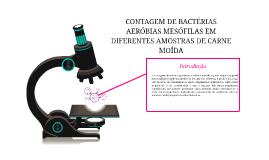 Copy of CONTAGEM DE BACTÉRIAS AERÓBIAS MESÓFILAS EM DIFERENTES AMOST