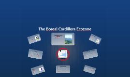 Boreal Cordillera
