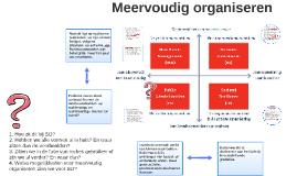 Meervoudig organiseren