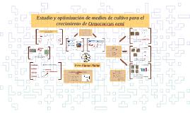 Estudio y optimización de medios de cultivo para Oenococcus