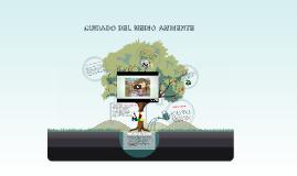 Copy of CUIDADO DEL MEDIO AMBIENTE