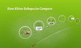 Rhino Subspecies