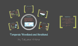Copy of Temperate Woodland and Shrubland