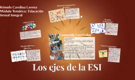 Los ejes de la ESI