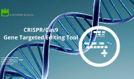 CRISPR/Cas9 Gene Targeted Editing Tool