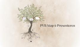 PVB Stap 6 Presenteren