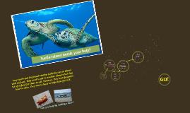 Turtle Island needs your help!