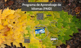 Copy of Programa de Inglés