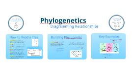 BI 1: Phylogenetics