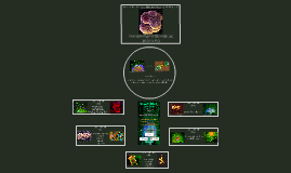 Copy of SCT High School Presentation
