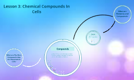 Copy of Lesson:3 Compounds in Cells