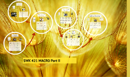 SWK 421 MACRO Part II
