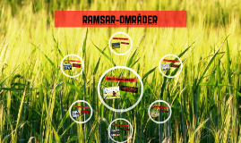 Ramsarområder