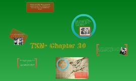 Chapter 20-To Kill a Mockingbird