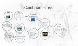 Cambrian Period by Jack Boekeloo on Prezi