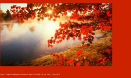 """Home - Desktop Wallpapers & Photos - Autumn."" AUTUMN. N.p.,"
