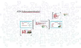 ATP                                   Indholdsfortegnelse
