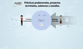Prácticas profesionales, proyectos terminales, estancias y e