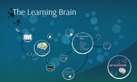 Copy of The Learning Brain