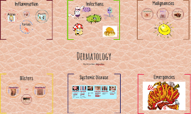 Dermatology - Year 2 Revision