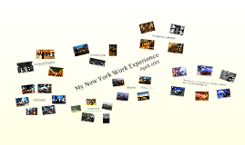 New York Work Experience